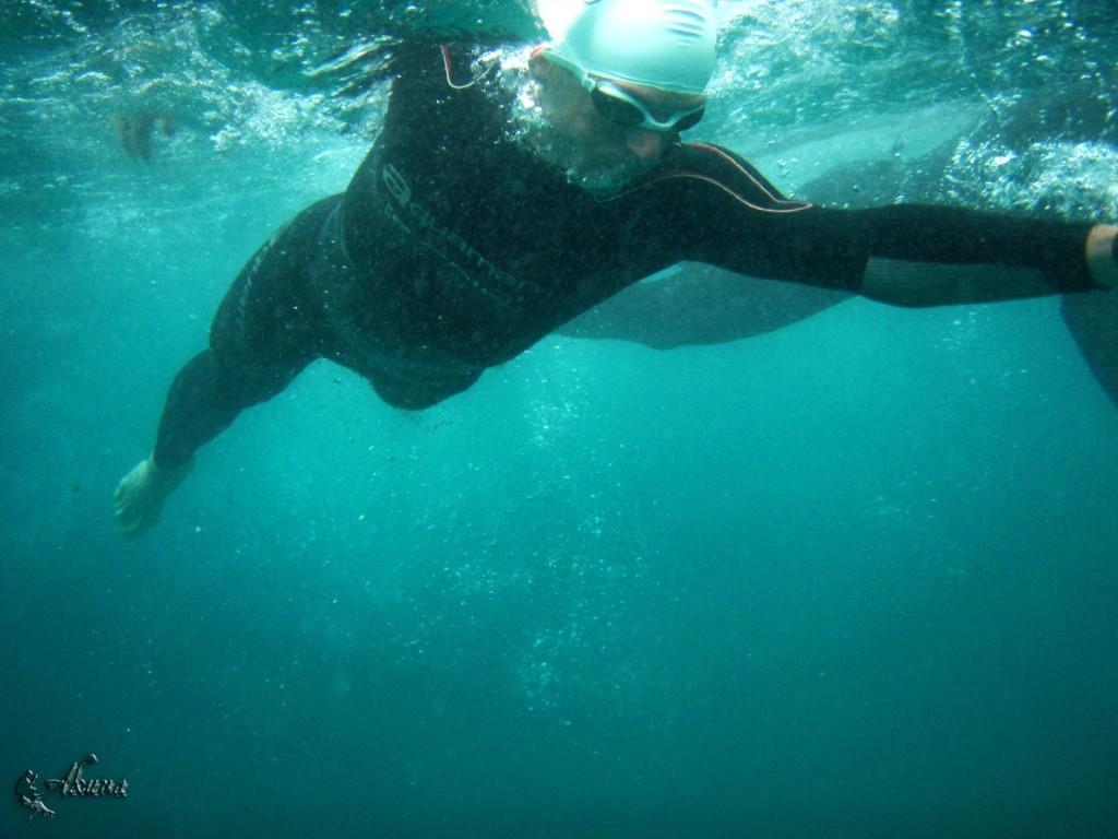 triathlon swimming in sea